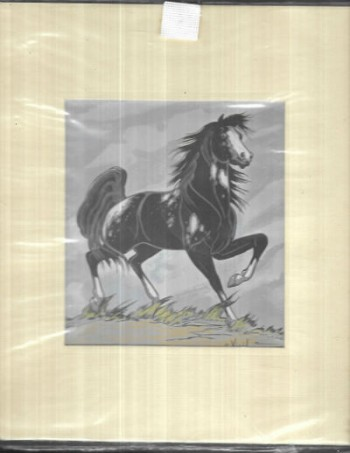 "Image for Frank Vigil Appaloosa Horse Silkscreen reproduction 10.5"" X 11.25"""