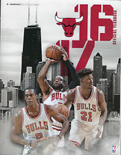 Image for 2016-2017 NBA CHICAGO BULLS OFFICIAL TEAM BASKETBALL YEARBOOK