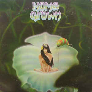 Image for Home Grown  Label:  SKUA Records ‎– none  Series:  Home Grown (3) – I  Format:  Vinyl, LP, Album  Country:  US  Released:  1976  Genre:  Jazz, Rock, Latin, Funk / Soul  Style:  Folk Rock, Soul, Disco