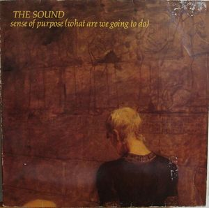 "Image for Sound, The (2) ‎– Sense Of Purpose (What Are We Going To Do)  Label:  WEA ‎– WEA 28.274  Format:  Vinyl, 12""  Country:  Netherlands  Released:  1981  Genre:  Rock  Style:  New Wave"