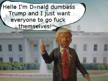 Image for Donald Dumbass Trump Non-action figure